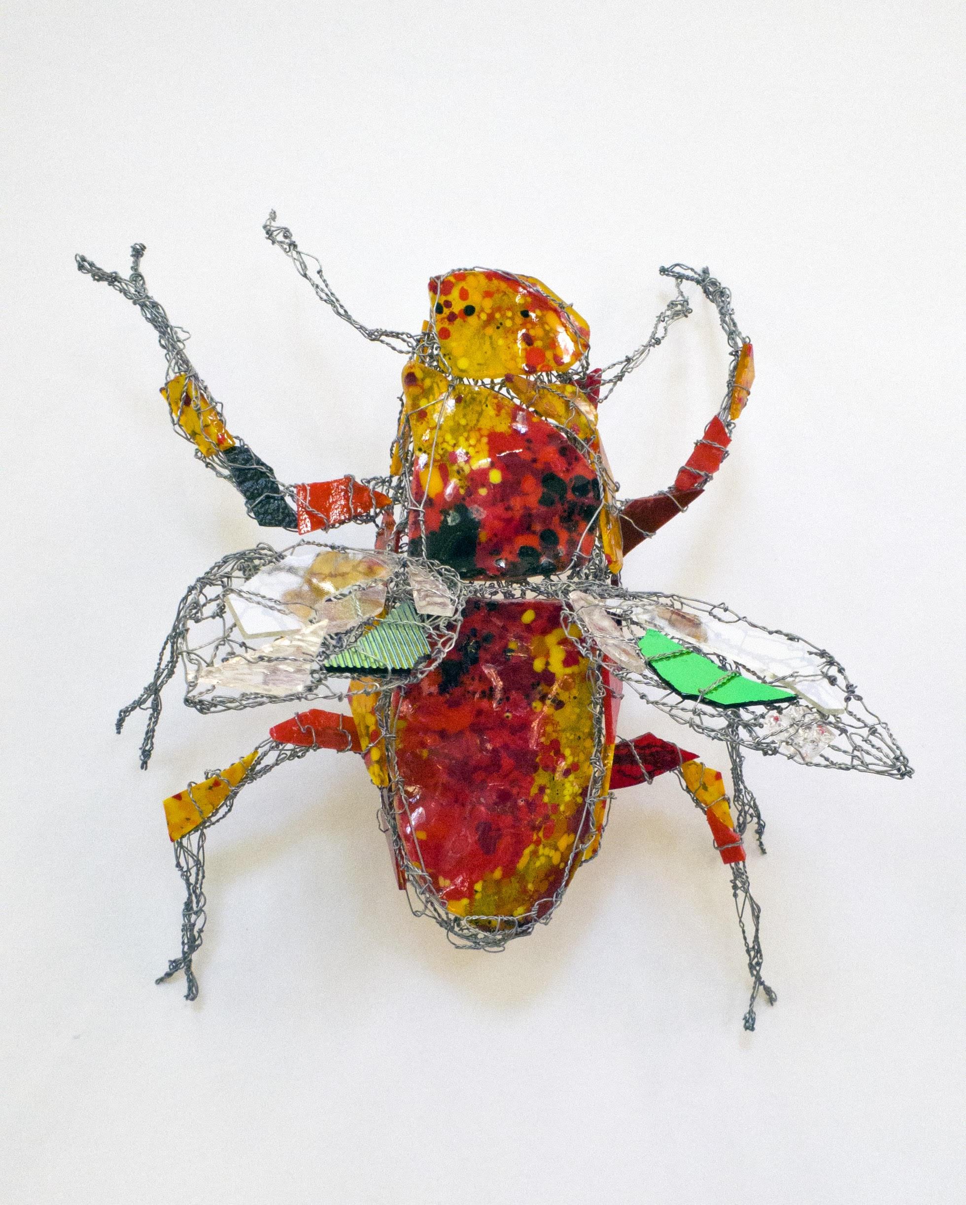 Red Blaze Beetle by Joan Danziger
